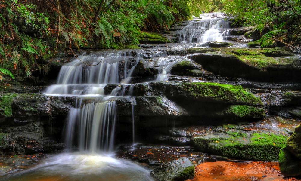 Leura cascades - Blue Mountains Tours from Sydney