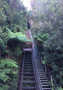 Scenic Railway - Blue Mountains day tour