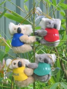 koalaclipon
