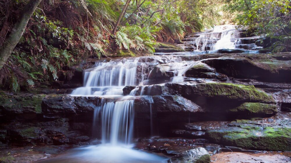 What to do in Leura Blue Mountains Walk to Leura Cascades