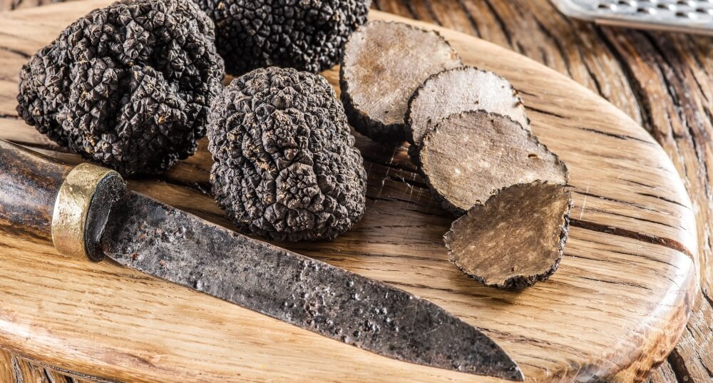 Canberra excursions on Truffle Farm